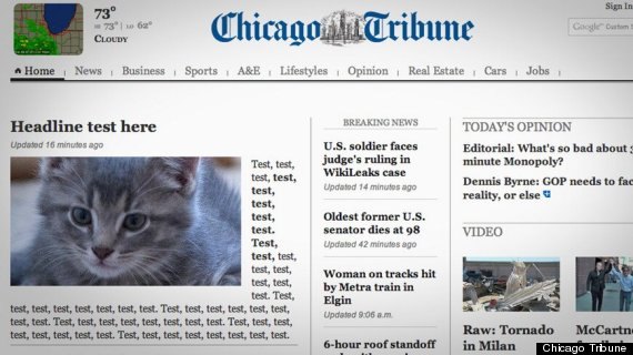 Chicago Tribune kittens