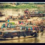stylized mekong delta